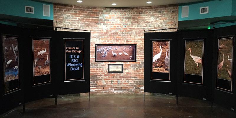 Festival of the Cranes Carnegie Photo Exhibit