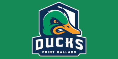 Point Mallard Ducks